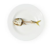 Esqueleto de los pescados en la placa fotos de archivo