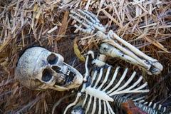 Esqueleto de Víspera de Todos los Santos imágenes de archivo libres de regalías