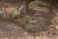 Esqueleto del animal pequeño y grande que miente en la tierra en cueva Imagen de archivo libre de regalías