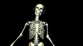 Esqueleto del baile ilustración del vector
