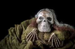 Esqueleto del ser humano de Halloween Imagen de archivo libre de regalías