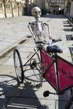 Esqueleto do banho Fotografia de Stock Royalty Free