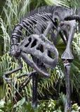 Esqueleto do dinossauro Fotografia de Stock Royalty Free