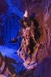 Esqueleto do pirata dos piratas das Caraíbas imagem de stock royalty free