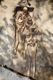 Esqueleto dois archeology fotos de stock