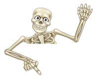 Esqueleto dos desenhos animados que aponta para baixo Fotografia de Stock