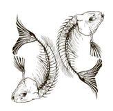 Esqueleto dos peixes ilustração do vetor