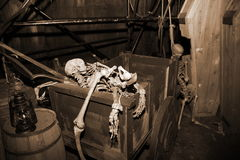 Esqueleto en caja de la vendimia Imagen de archivo libre de regalías