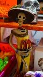 Esqueleto grávido Foto de Stock