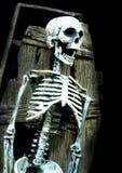 Esqueleto gritando no caixão fotografia de stock