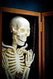Esqueleto humano Imagens de Stock Royalty Free