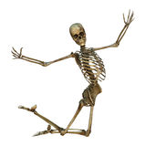 Esqueleto humano stock de ilustración