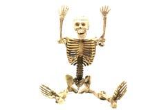 Esqueleto humano en el fondo blanco Imágenes de archivo libres de regalías