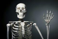 Esqueleto humano feliz que dice hola Imagen de archivo libre de regalías