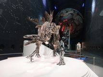 Esqueleto impressionante do Stegosaurus no salão da terra fotos de stock royalty free