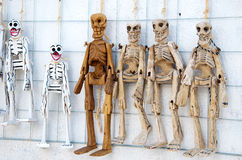 Esqueletos Imagem de Stock Royalty Free