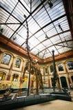 Esqueletos do dinossauro no museu de Naturkunde, Berlim Foto de Stock