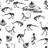 Esqueletos negros de reptiles, de animales y de pájaros en el fondo blanco Modelo inconsútil Imagen de archivo libre de regalías