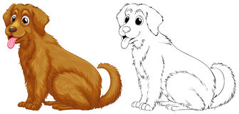 Esquema animal para el perro del golden retriever ilustración del vector