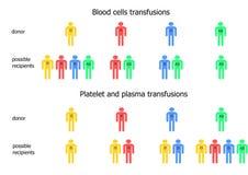 Esquema das transfusões de sangue Fotografia de Stock