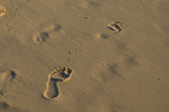 Esquema de huellas en la arena de una playa Fotografía de archivo