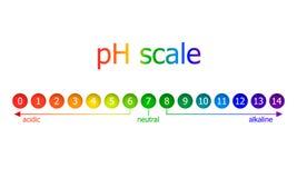 Esquema de la escala del vector pH, colores del arco iris, aislados en el ejemplo blanco del fondo ilustración del vector
