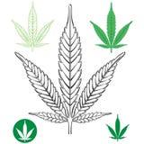 Esquema de la hoja de la marijuana del cáñamo ilustración del vector