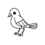 Esquema derecho del pájaro Imágenes de archivo libres de regalías