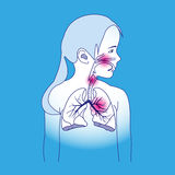 Esquema respiratorio del niño Imagen de archivo libre de regalías