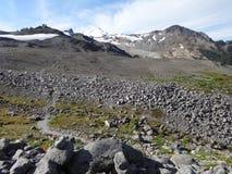 Esquerda sobre a neve no cume do padeiro da montagem da fuga de Ridge do lagópode dos Alpes Imagem de Stock