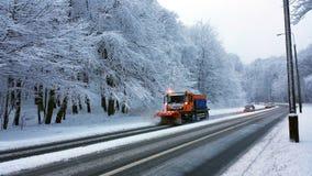 Esquerdo ou direito? Floresta do inverno - panorama fotografia de stock royalty free