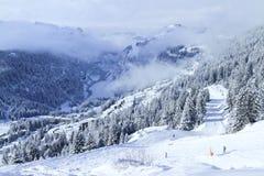 Esqui através da floresta alpina no recurso francês do esporte de inverno imagem de stock royalty free