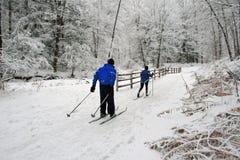 Esqui através dos campos. Fotografia de Stock Royalty Free