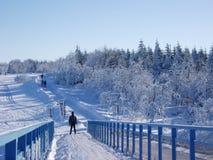 Esqui através dos campos Imagens de Stock Royalty Free