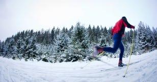 Esqui através dos campos de homem novo Imagens de Stock