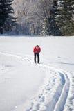 Esqui através dos campos de homem novo Fotos de Stock