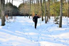 Esqui através dos campos sênior Foto de Stock Royalty Free
