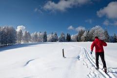 Esqui através dos campos de homem novo Fotos de Stock Royalty Free