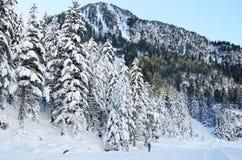 Esqui corta-mato no vale de Marcadau Fotos de Stock Royalty Free