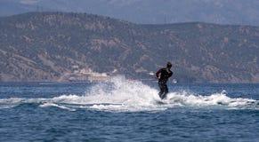 Esqui de água Fotografia de Stock