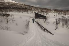 Esqui do esquiador na montanha em um dia nebuloso foto de stock royalty free