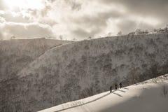 Esqui do esquiador na montanha em um dia nebuloso imagens de stock royalty free