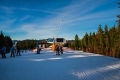 Esqui do inverno Fotos de Stock Royalty Free