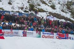 Esqui do WC que voa Vikersund (Noruega) o 14 de fevereiro de 2015 Imagem de Stock Royalty Free