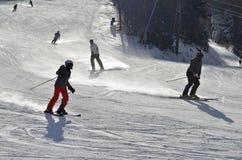 Esqui, esquiador, Freeride em inclinações preparadas Foto de Stock Royalty Free