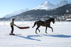 Esqui Joring/Joering Fotografia de Stock