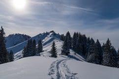 Esqui que visita a trilha na paisagem ensolarada bonita do inverno, Oberstdorf, Alemanha Fotos de Stock Royalty Free