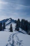 Esqui que visita a trilha na paisagem ensolarada bonita do inverno, Oberstdorf, Alemanha Imagem de Stock