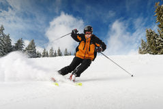 Esquiador Imagens de Stock