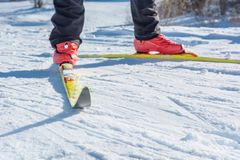 Esquiador de Backcountry Foto de Stock Royalty Free